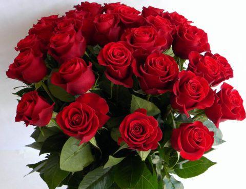 Букет из красных роз-признание в любви