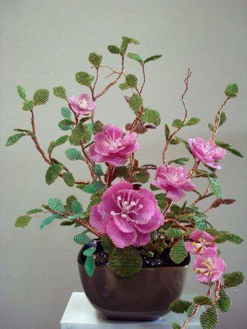 Горшечный цветок