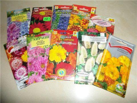 Семена редких растений- хороший подарок для садовода