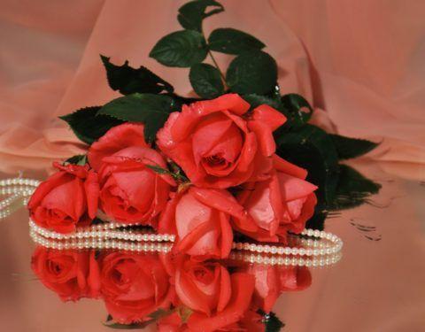 Розы и жемчужное ожерелье – замечательный подарок.