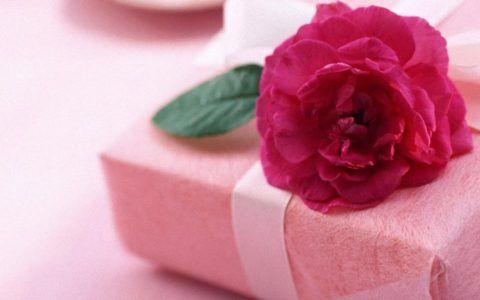 Скромный подарок и милый цветок.
