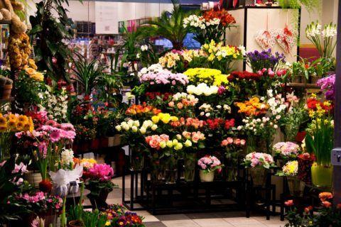 В цветочном салоне всегда «разбегаются» глаза
