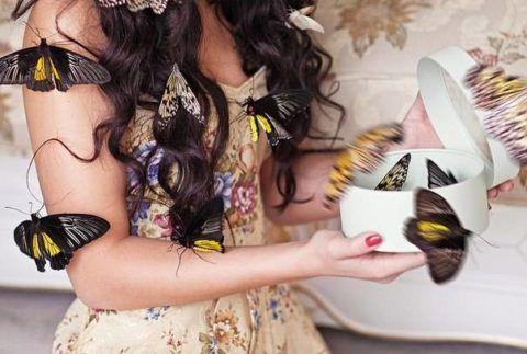 Живые бабочки в подарок маме.