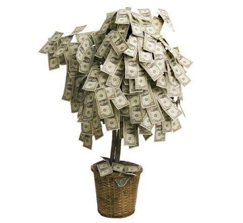 Каким может быть денежное дерево на свадьбу?