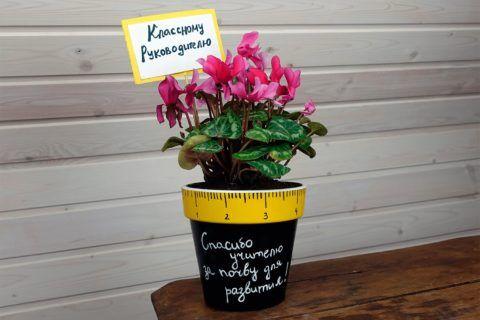Оригинальный вариант как преподнести цветок