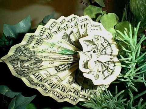 Цветок с деньгами