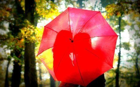 Зонтик – лучший подарок.