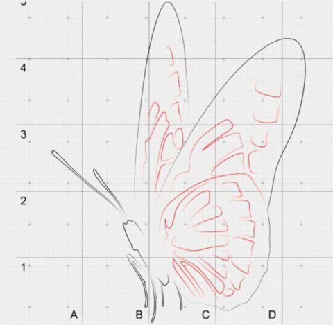 Детализация крыльев