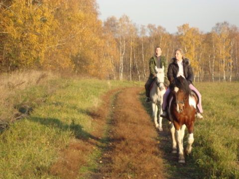 Лесная прогулка на лошадях
