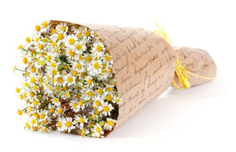 Романтичные ромашки в красивом букете