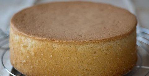 Бисквитная основа торта.