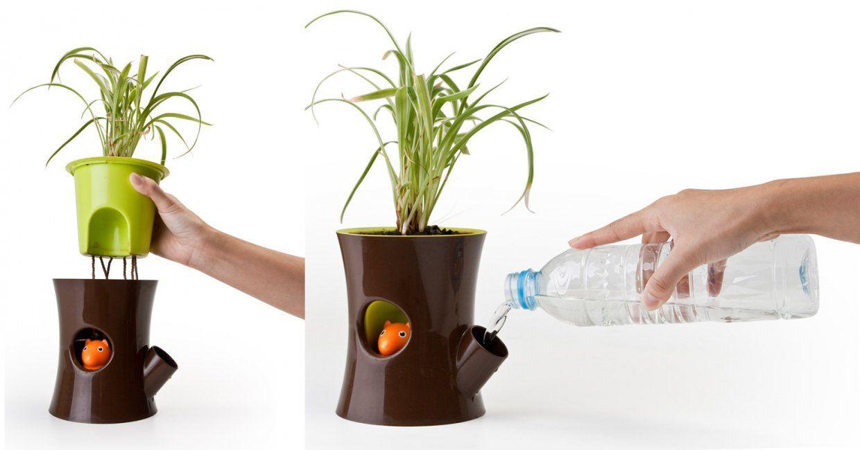 Фитильный полив для комнатных растений своими руками