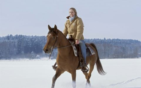 Прогулка на лошадях