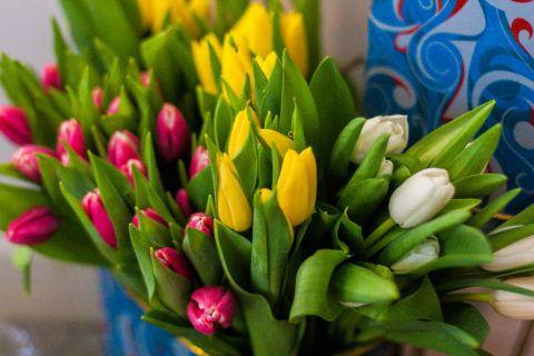 Букет разноцветных тюльпанов – это уже бессмертная классика.