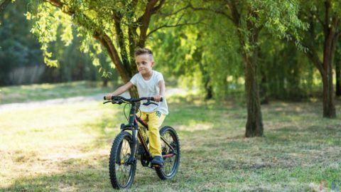 Какой мальчишка не мечтает о велосипеде?