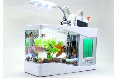 Небольшой, но милый аквариум для успокоения.