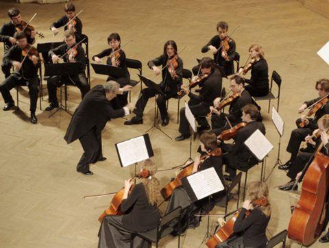 Ценительница классической музыки не откажется посетить концерт.