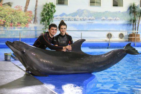 Плавание с дельфинами дарит незабываемые ощущения и очень сближает пары