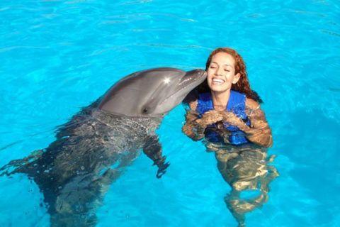 Подарите плавание с дельфинами