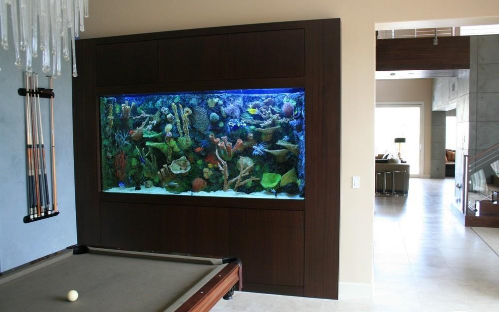 Потрясающий домашний аквариум
