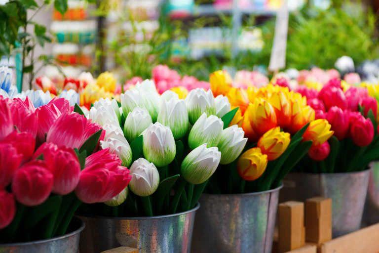 Shop show постель весенние цветы тюльпаны