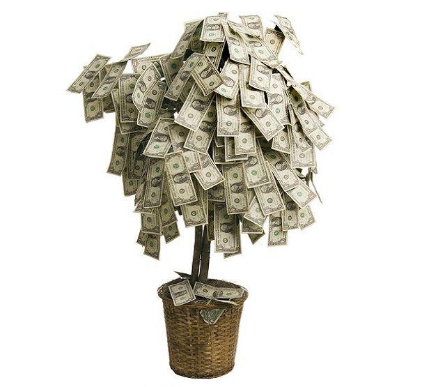 """Картинки по запросу """"денежное дерево из купюр"""""""""""