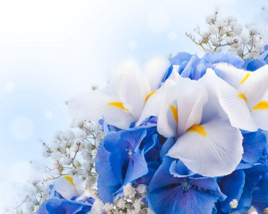 Открытки, открытка синие цветы